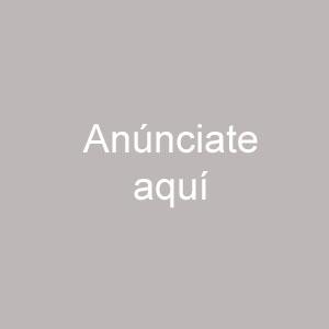 www.elnuevogeorgia.com