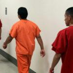 Se ahorcó en Stewart mientras esperaba ser deportado